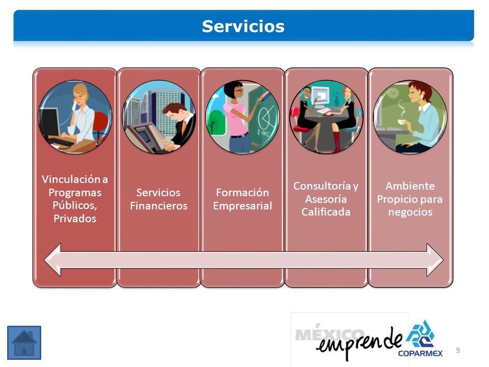 Servicios Vinculación a Programas Públicos, Privados