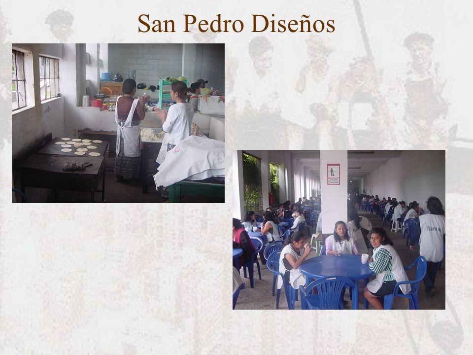 San Pedro Diseños