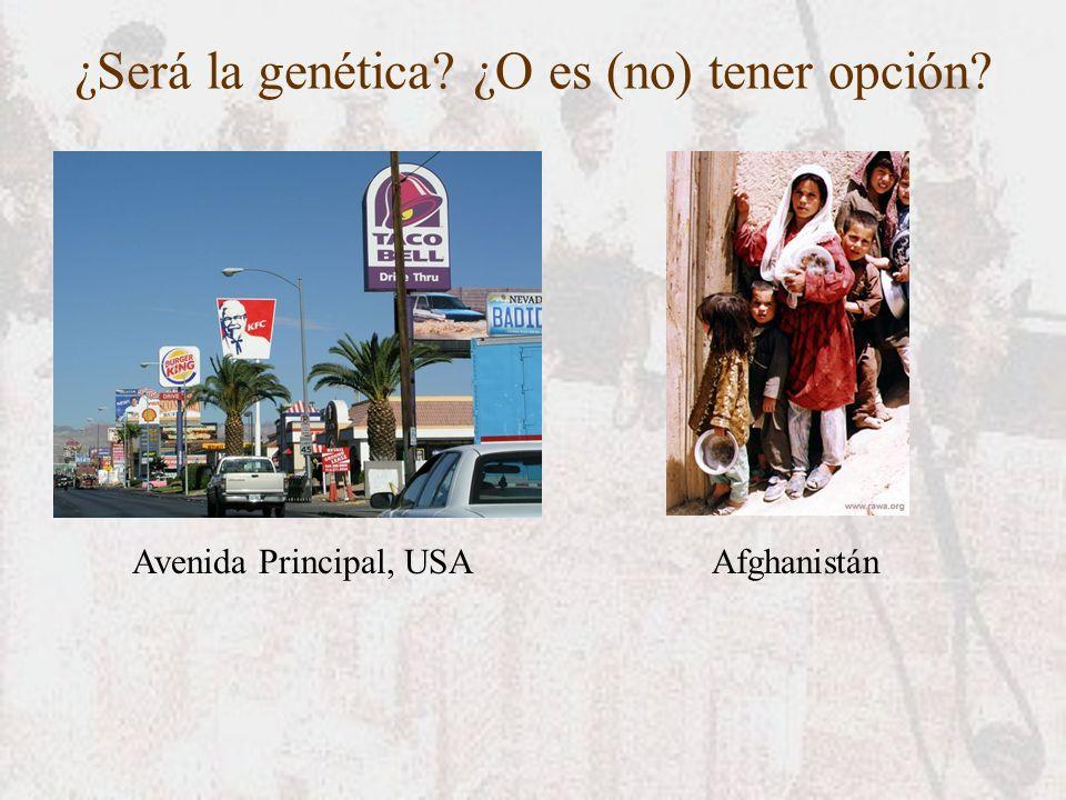 ¿Será la genética ¿O es (no) tener opción