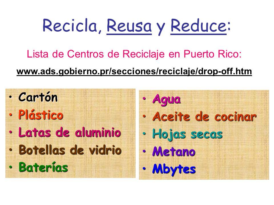 Recicla, Reusa y Reduce: