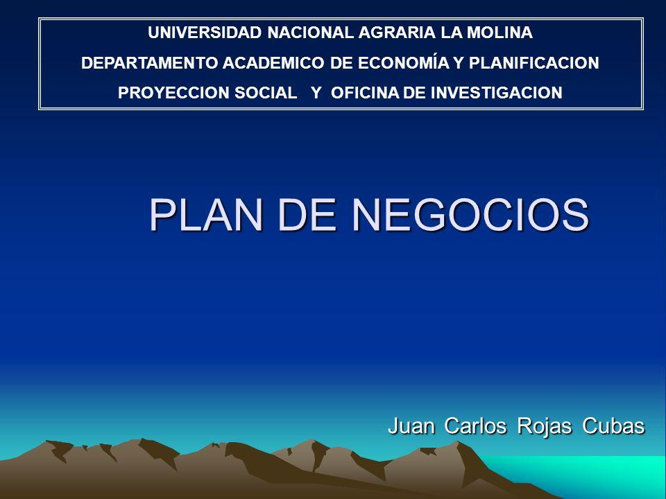 Juan Carlos Rojas Cubas