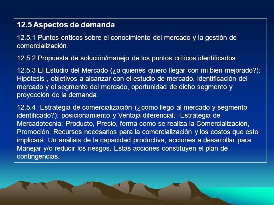 12.5 Aspectos de demanda 12.5.1 Puntos críticos sobre el conocimiento del mercado y la gestión de comercialización.