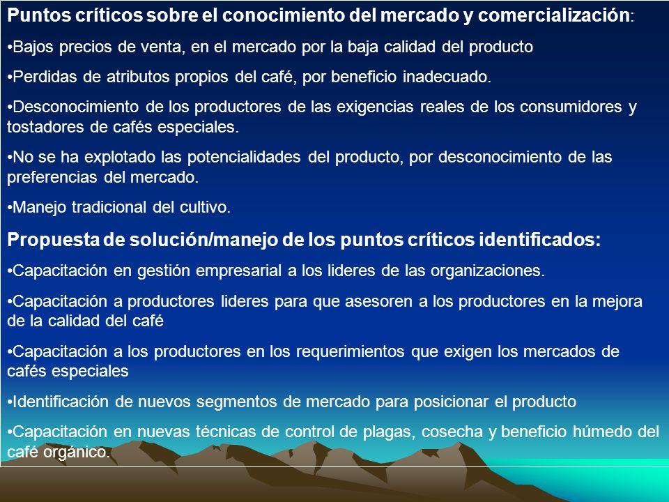 Puntos críticos sobre el conocimiento del mercado y comercialización: