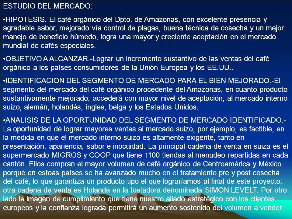 ESTUDIO DEL MERCADO: