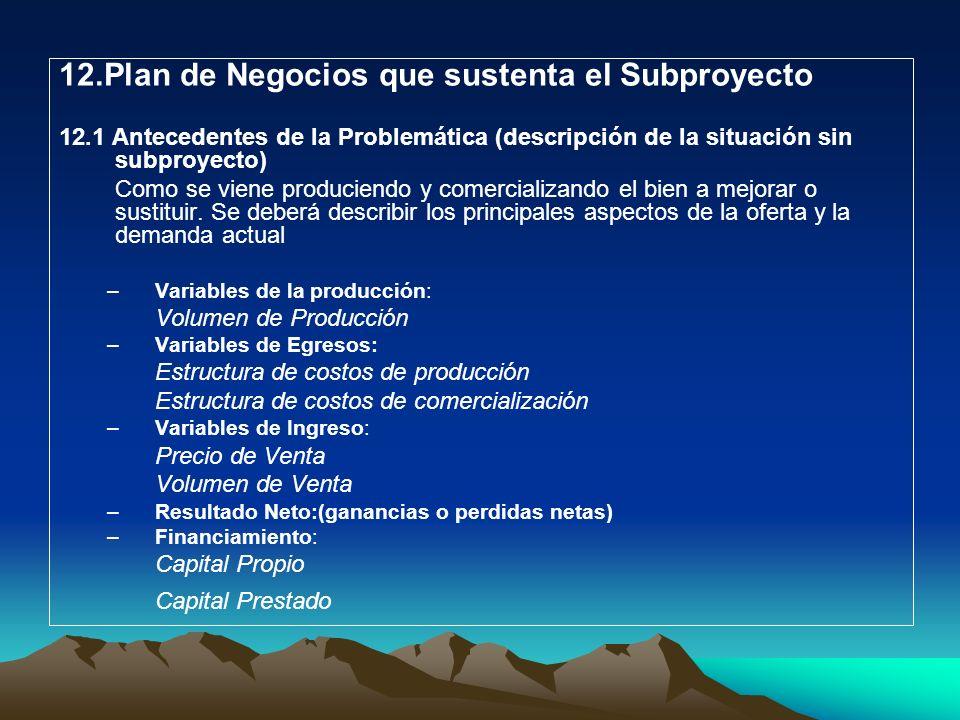 12.Plan de Negocios que sustenta el Subproyecto