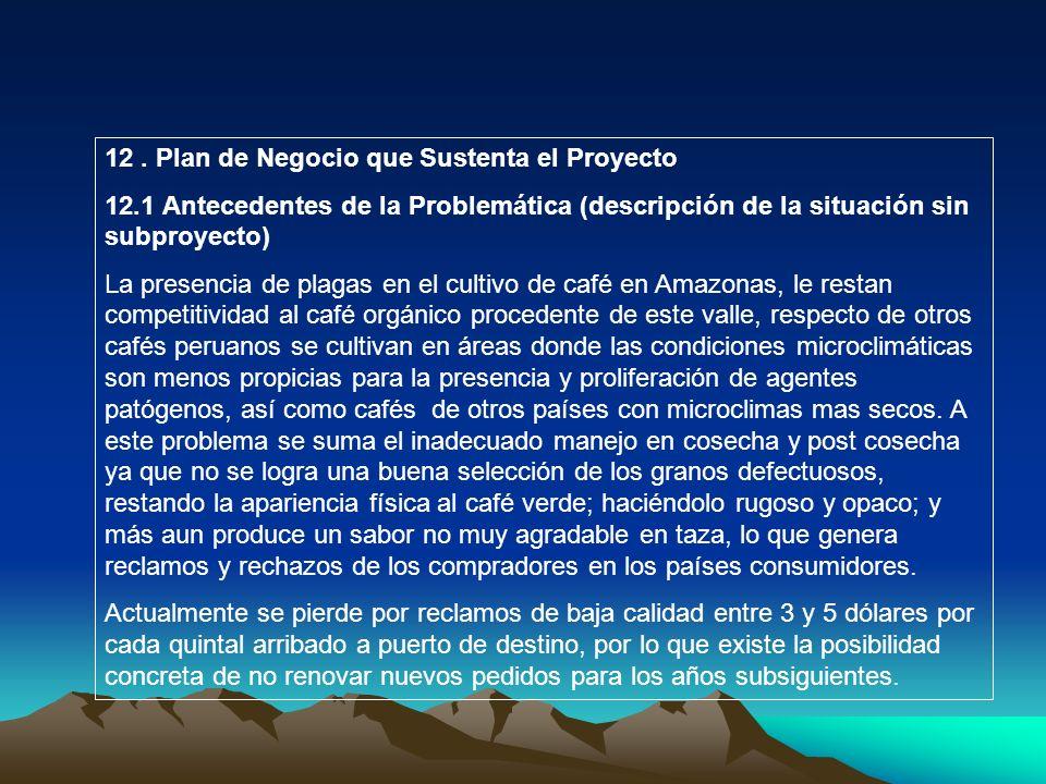 12 . Plan de Negocio que Sustenta el Proyecto