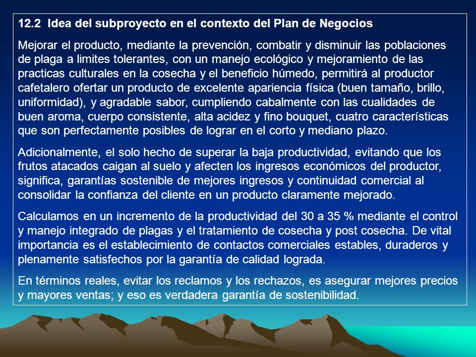12.2 Idea del subproyecto en el contexto del Plan de Negocios