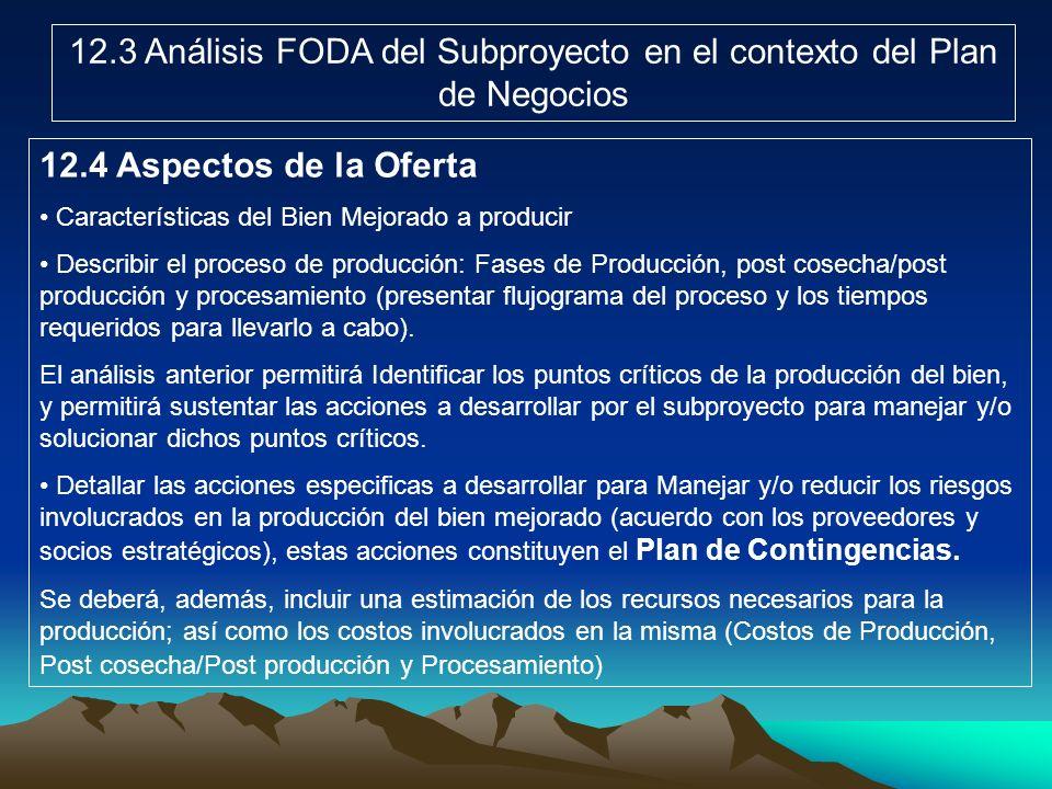 12.3 Análisis FODA del Subproyecto en el contexto del Plan de Negocios