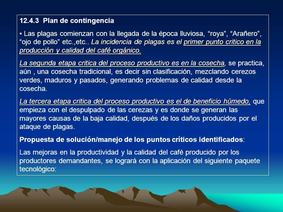 12.4.3 Plan de contingencia