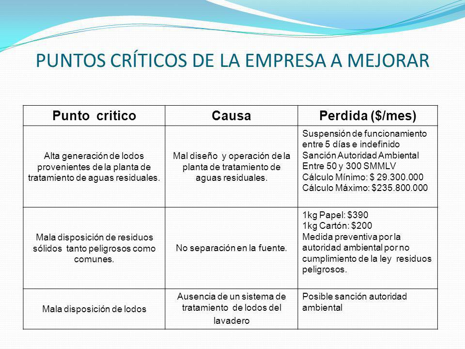 PUNTOS CRÍTICOS DE LA EMPRESA A MEJORAR