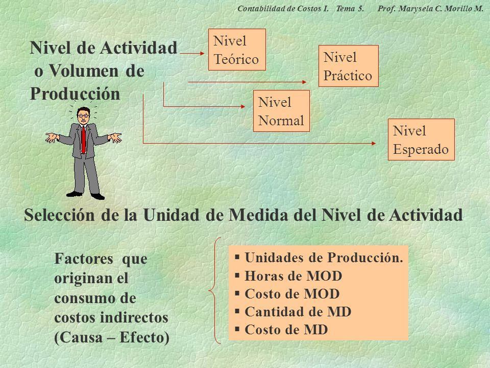 Nivel de Actividad o Volumen de Producción