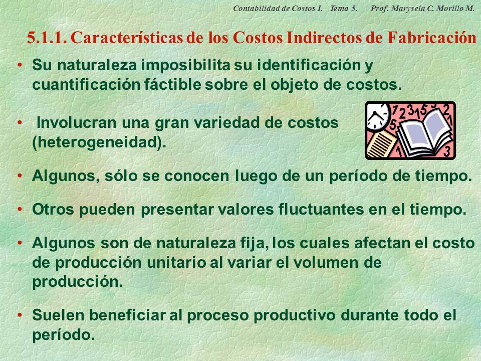 5.1.1. Características de los Costos Indirectos de Fabricación
