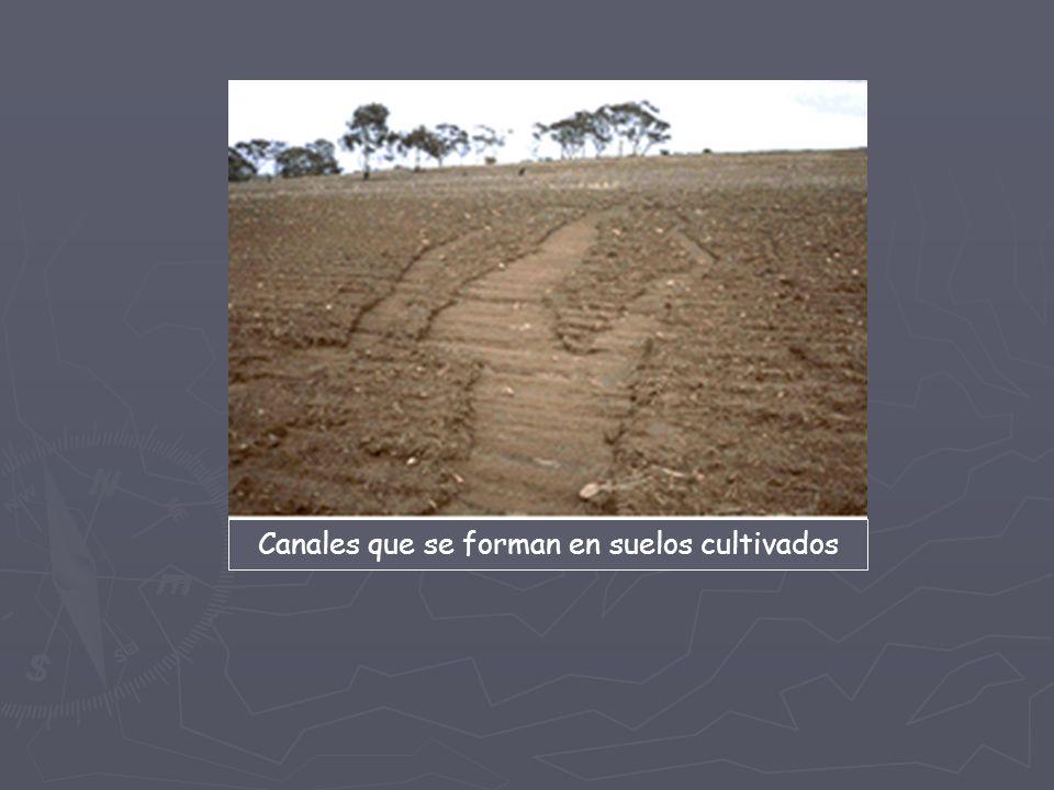 Erosi n fase del proceso de denudaci n que comprende el for Materiales que forman el suelo