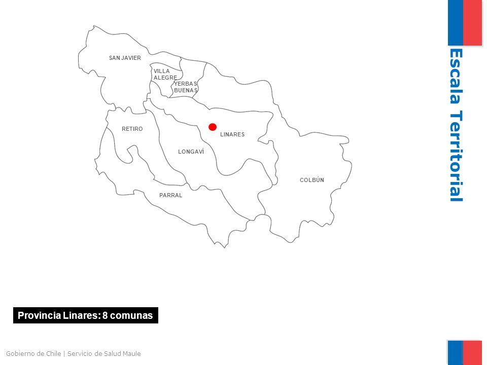 Escala Territorial Provincia Linares: 8 comunas
