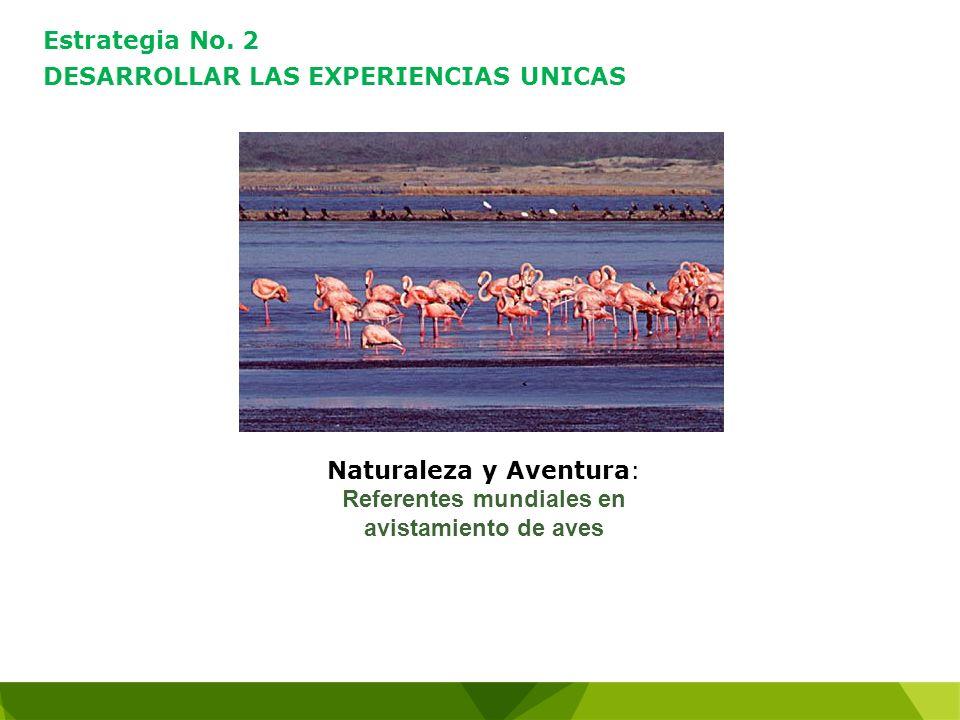 Naturaleza y Aventura: Referentes mundiales en