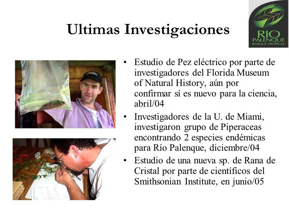 Ultimas Investigaciones