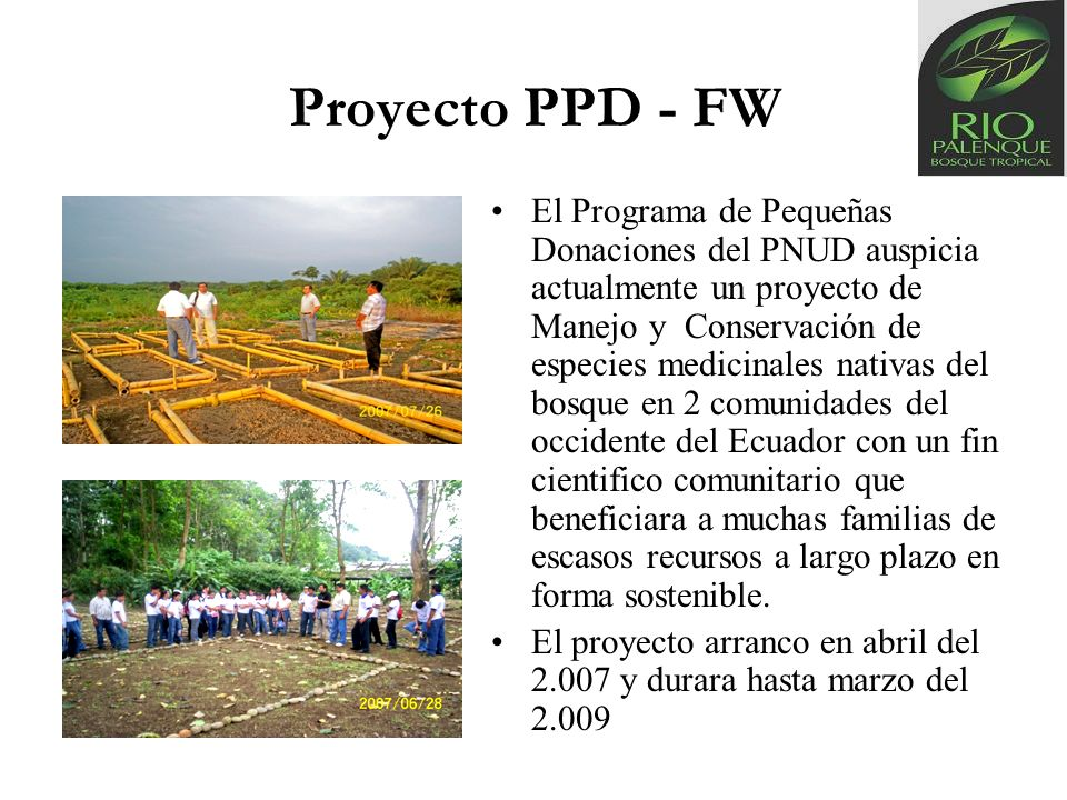 Proyecto PPD - FW