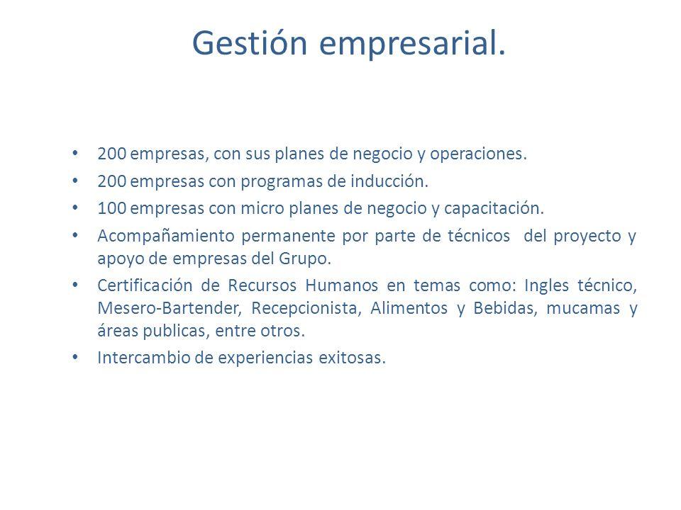 Gestión empresarial. 200 empresas, con sus planes de negocio y operaciones. 200 empresas con programas de inducción.