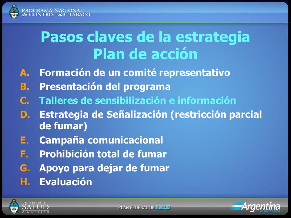 Pasos claves de la estrategia Plan de acción