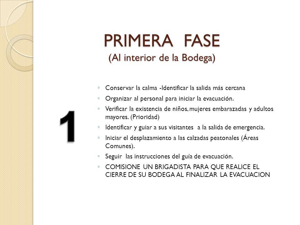 PRIMERA FASE (Al interior de la Bodega)