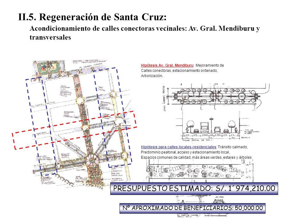 II.5. Regeneración de Santa Cruz: