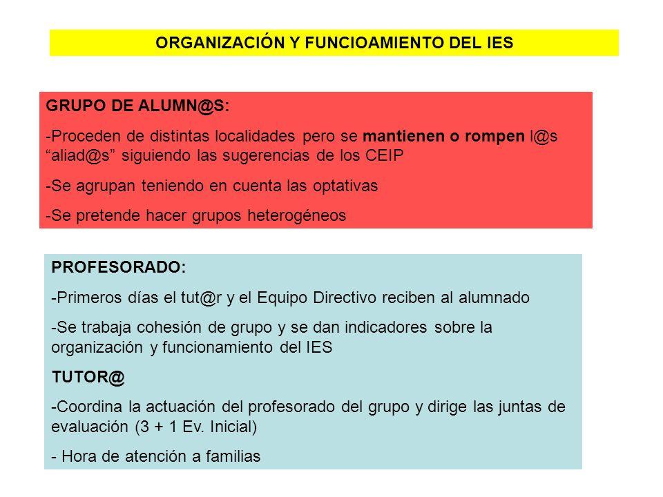 ORGANIZACIÓN Y FUNCIOAMIENTO DEL IES
