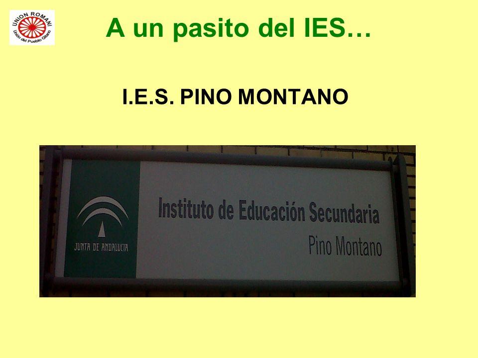 A un pasito del IES… I.E.S. PINO MONTANO