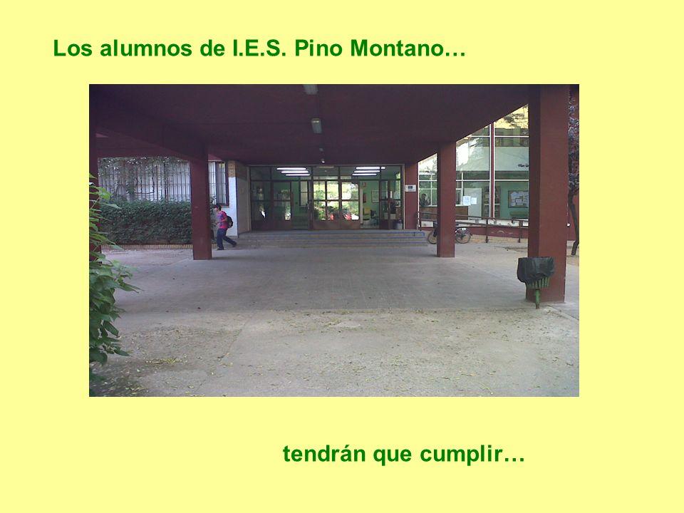 Los alumnos de I.E.S. Pino Montano…