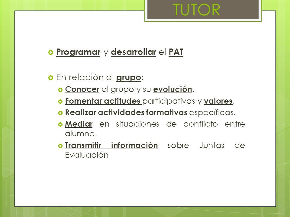 TUTOR Programar y desarrollar el PAT En relación al grupo: