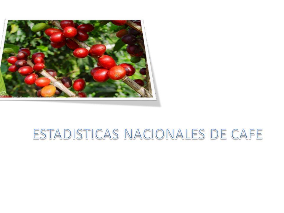 ESTADISTICAS NACIONALES DE CAFE
