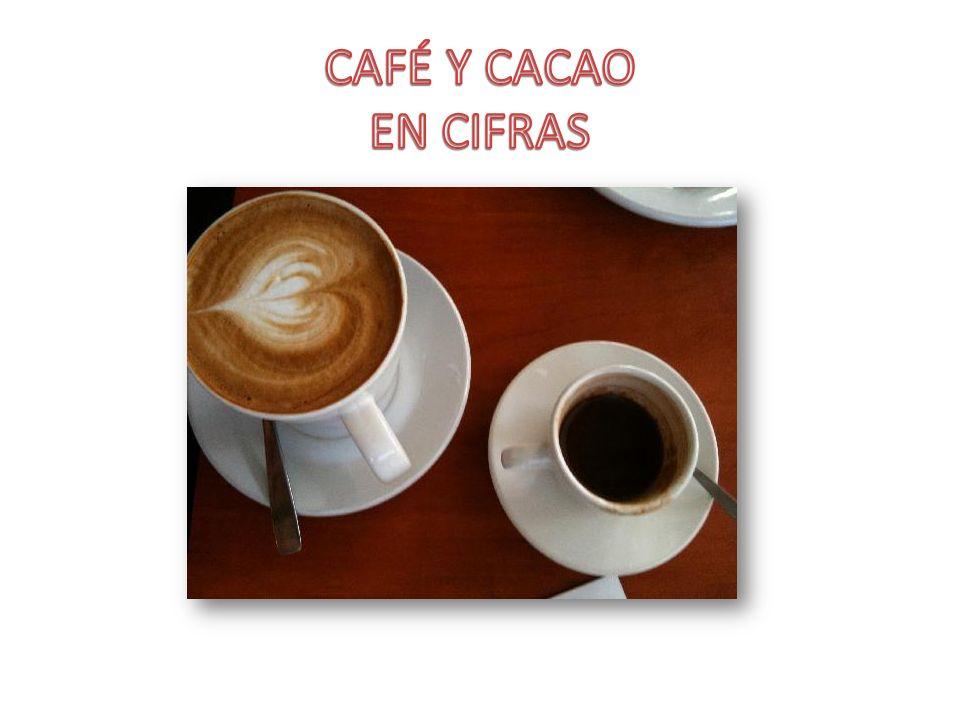 CAFÉ Y CACAO EN CIFRAS