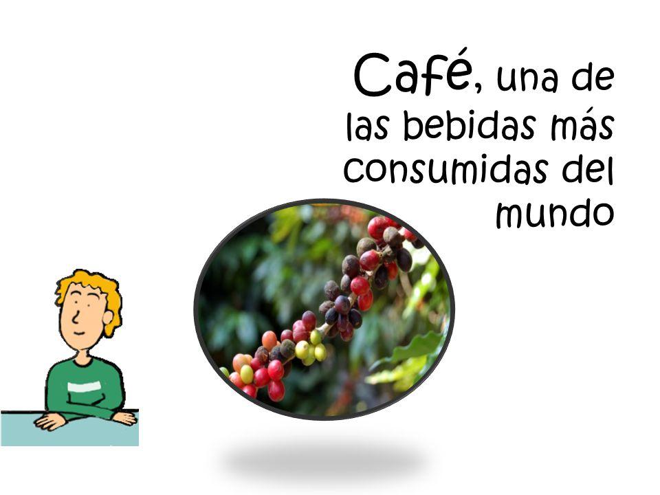 Café, una de las bebidas más consumidas del mundo