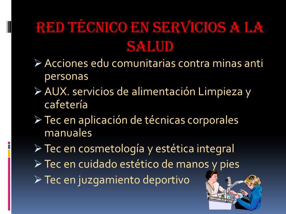 Red técnico en servicios a la salud
