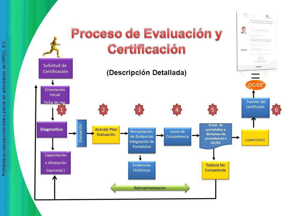 Proceso de Evaluación y Certificación (Descripción Detallada)