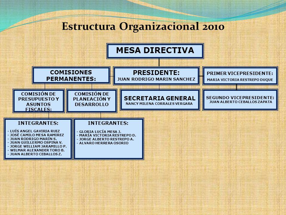 Estructura Organizacional 2010