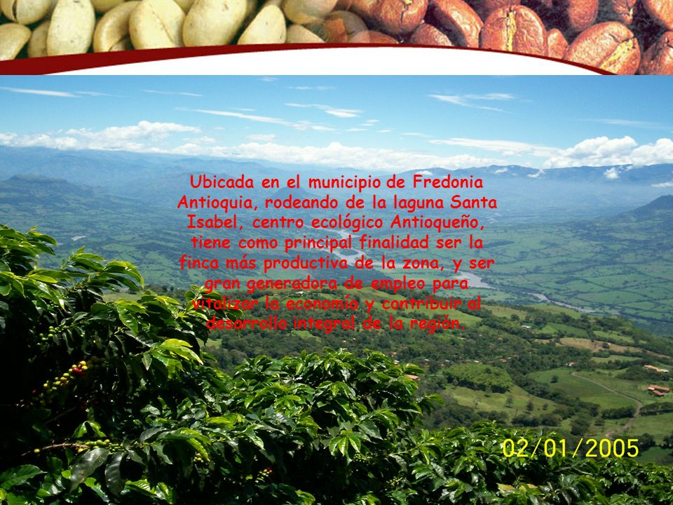 Ubicada en el municipio de Fredonia Antioquia, rodeando de la laguna Santa Isabel, centro ecológico Antioqueño, tiene como principal finalidad ser la finca más productiva de la zona, y ser gran generadora de empleo para vitalizar la economía y contribuir al desarrollo integral de la región.
