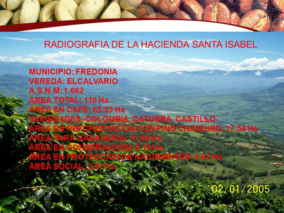RADIOGRAFIA DE LA HACIENDA SANTA ISABEL