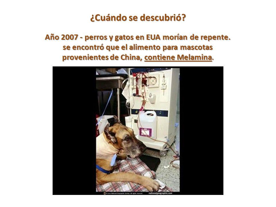 ¿Cuándo se descubrió. Año 2007 - perros y gatos en EUA morían de repente.