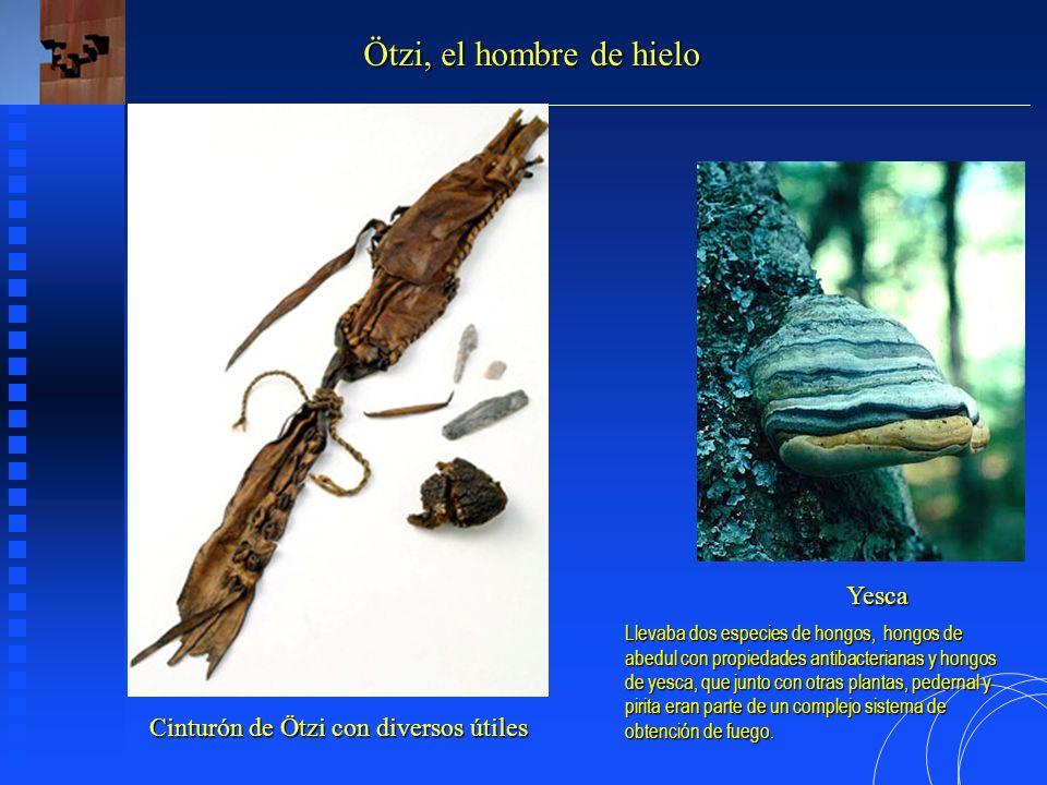 Cinturón de Ötzi con diversos útiles