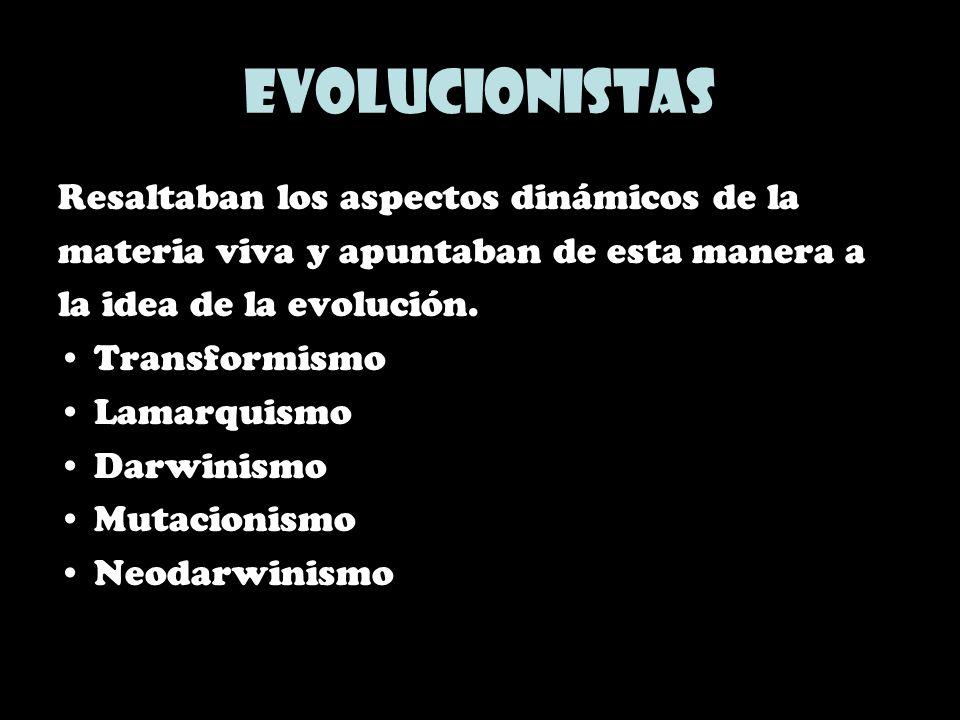 Evolucionistas Resaltaban los aspectos dinámicos de la