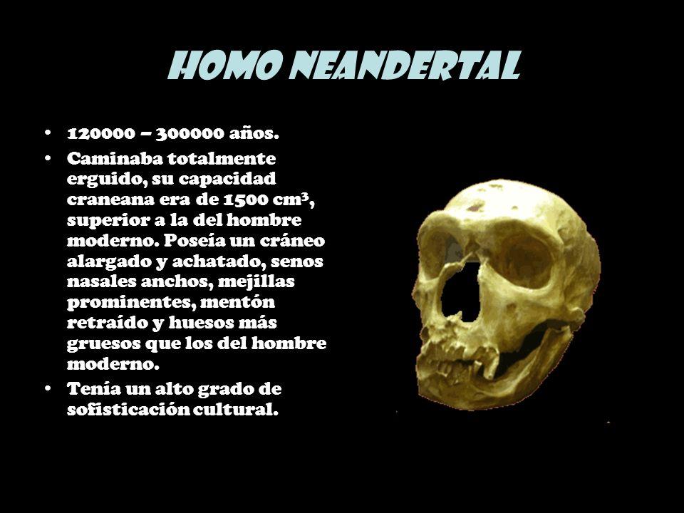 Homo Neandertal 120000 – 300000 años.