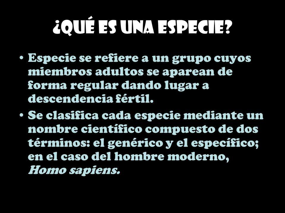 ¿Qué es una especie Especie se refiere a un grupo cuyos miembros adultos se aparean de forma regular dando lugar a descendencia fértil.