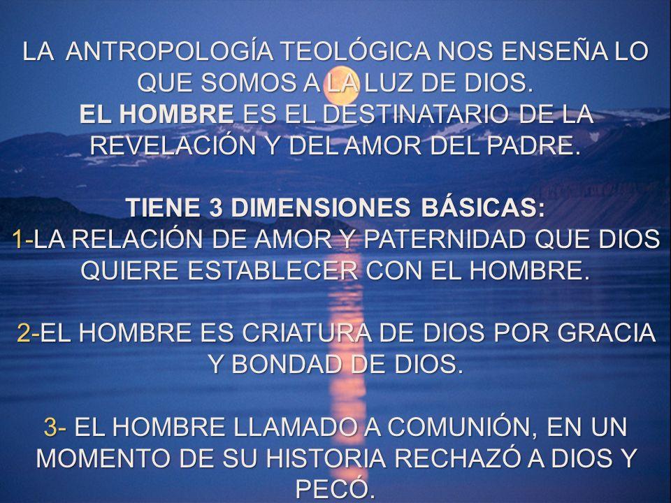 TIENE 3 DIMENSIONES BÁSICAS: