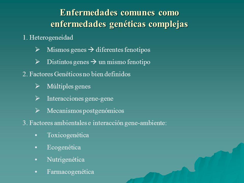 Enfermedades comunes como enfermedades genéticas complejas