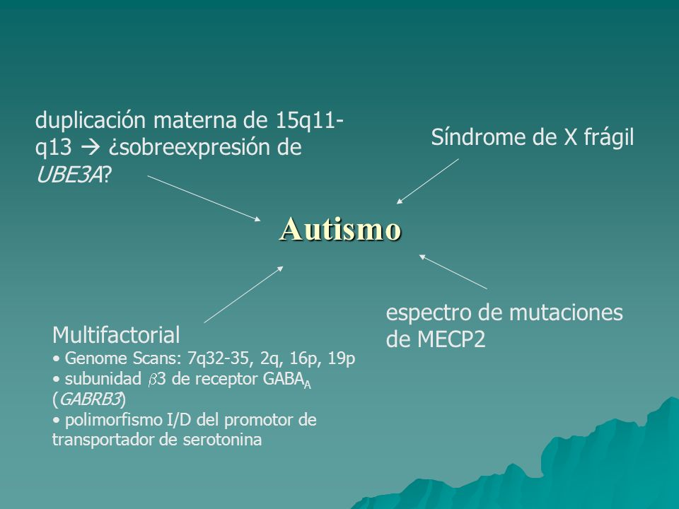 Autismo duplicación materna de 15q11-q13  ¿sobreexpresión de UBE3A
