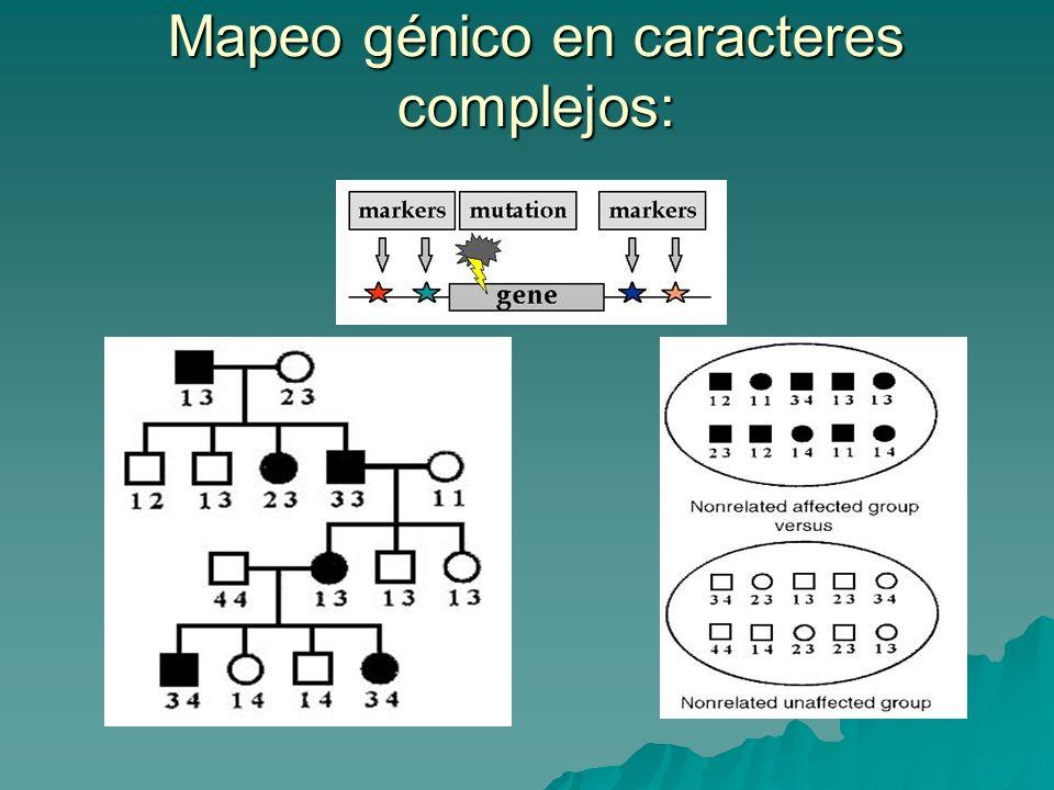 Mapeo génico en caracteres complejos: