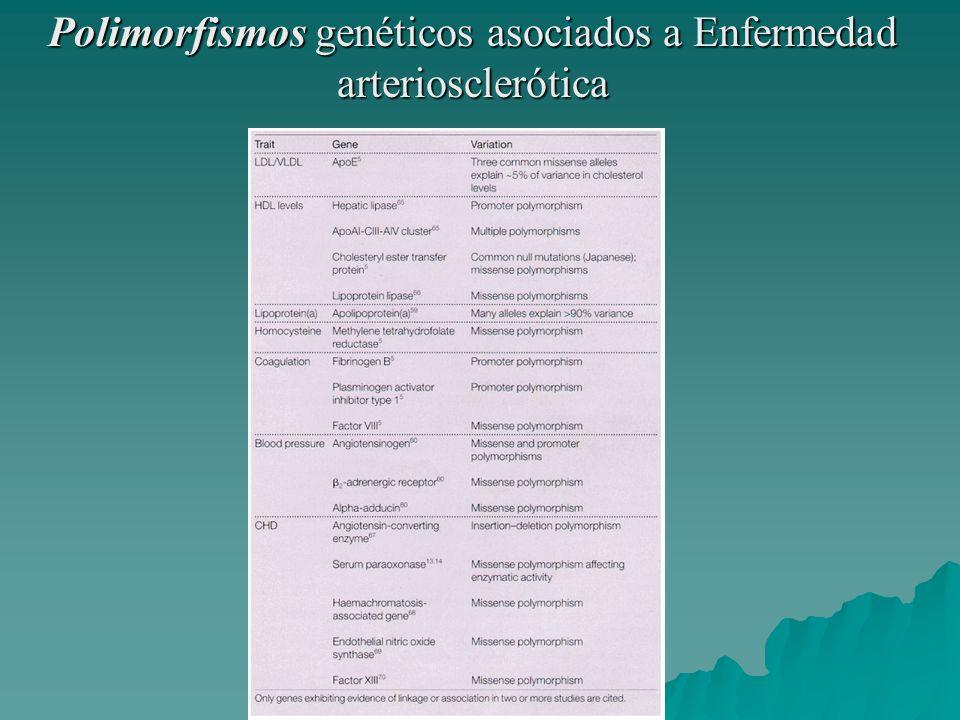 Polimorfismos genéticos asociados a Enfermedad arteriosclerótica