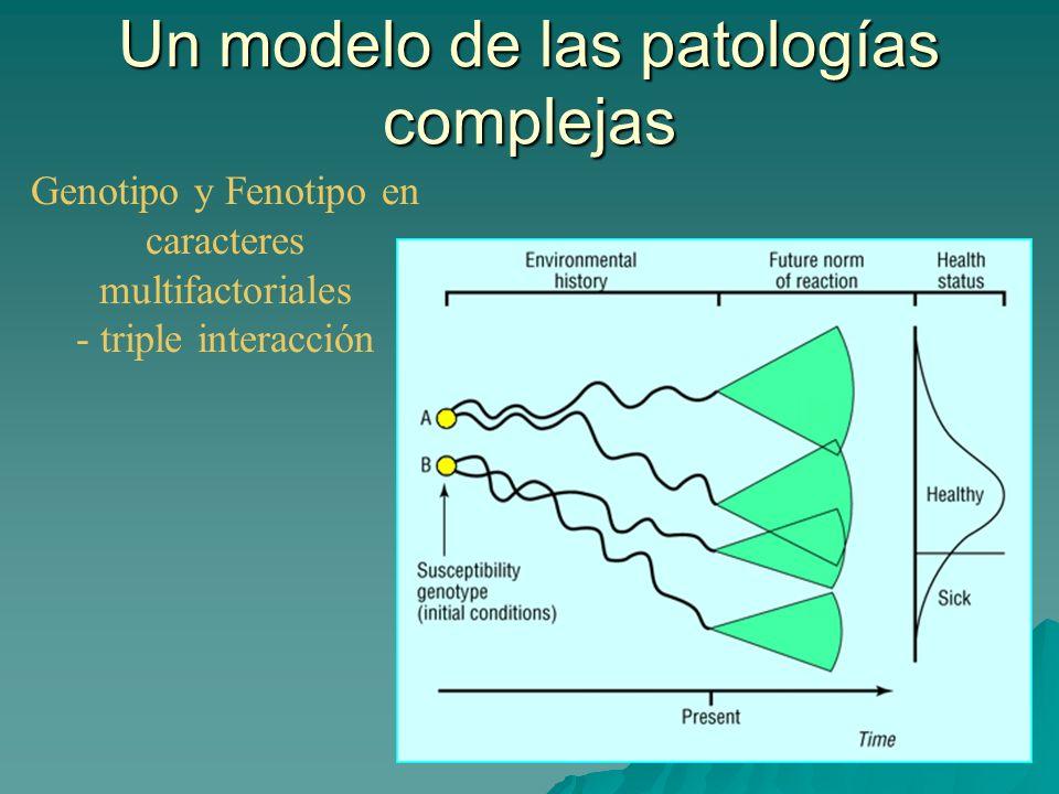 Un modelo de las patologías complejas
