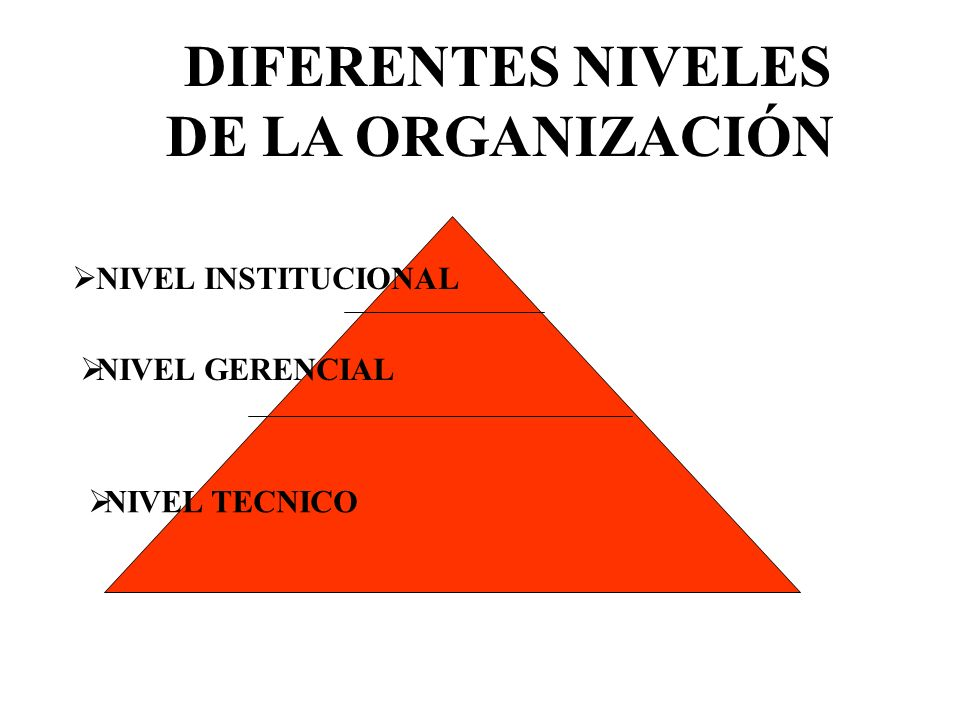 DIFERENTES NIVELES DE LA ORGANIZACIÓN