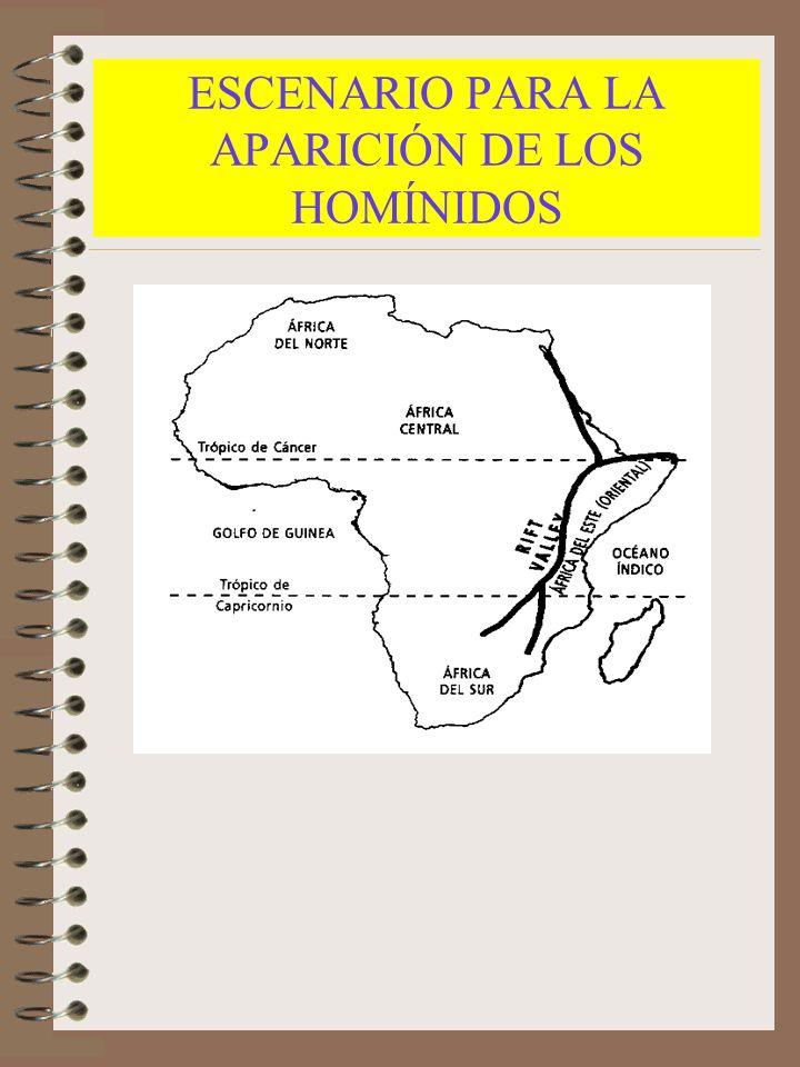 ESCENARIO PARA LA APARICIÓN DE LOS HOMÍNIDOS